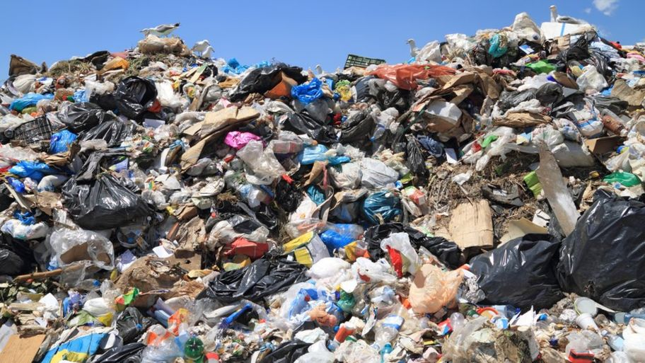Why your brain is like landfill